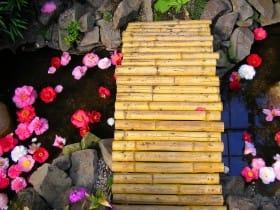 Bambusbrücke, Flora Köln